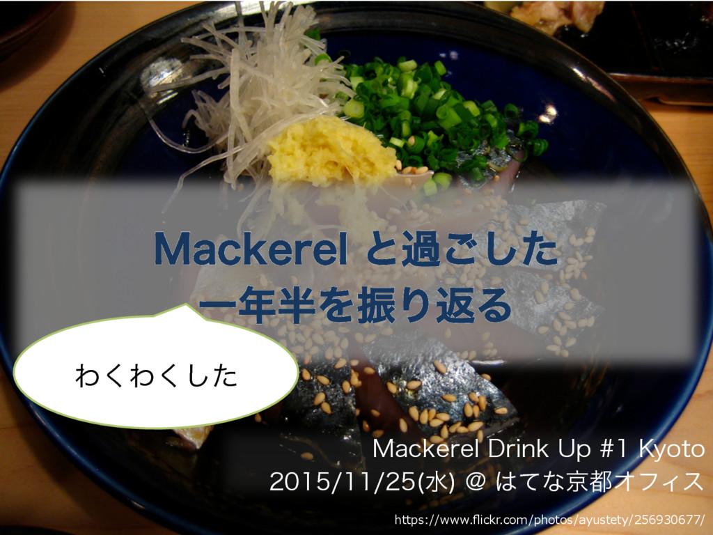 Mackerel と過ごしたわくわくした 一年半を振り返る