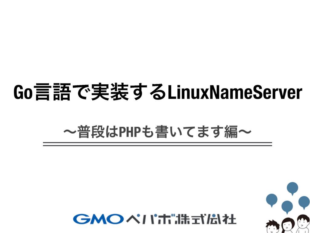 Go言語で実装するLinuxNameServer